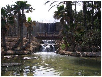 Espanja Costa Blanca Alicante El Palmeral puisto