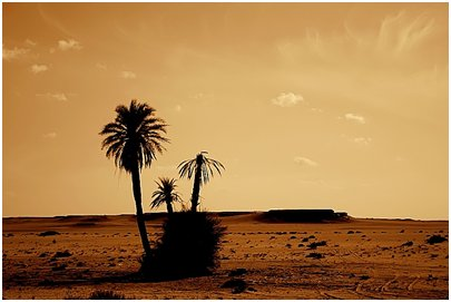Egypti Saharan autiomaa kuva